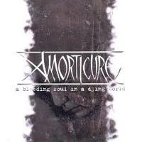 Amorticure-A-Bleeding-Soul.jpg