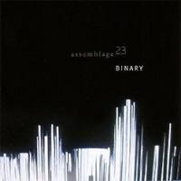 Assemblage-23-Binary.jpg