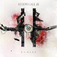 Assemblage-23-Bruise.jpg