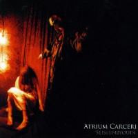 Atrium-Carceri-Seishinbyouin.jpg