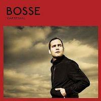 Bosse-Wartesaal.jpg