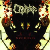 Cadaver-Necrosis.jpg