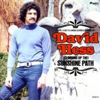 David-Hess-Climbing-up-the-Sunshine-Path.jpg