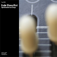 Ende-Shneafliet-Synthimental-Love-Songs.jpg