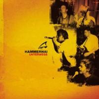 Hammerhai-Unterwegs.jpg