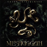 Meshuggah-Catch-Thirtythree.jpg