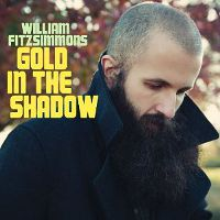 William-Fitzsimmons-Gold-In-The-Shadow.jpg