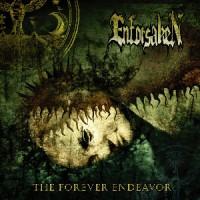 enforsaken__the_forever_endeavor.jpg