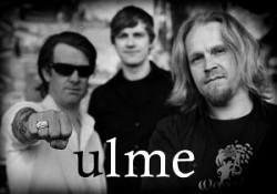 Ulme-2.jpg