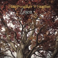 SLEEPWALKER'S STATION