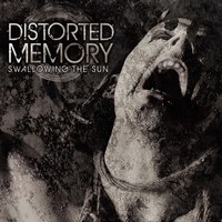 11381_mini-Distorted_Memory_Cover_STS.jpg